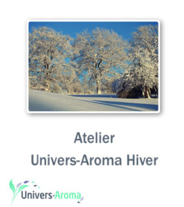 hiver_carre